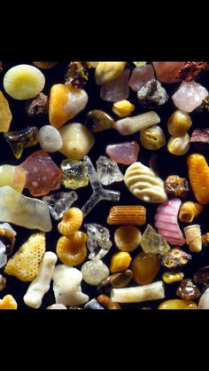 Honestly couldn't believe this is sand under a microscope!  WOWSer!