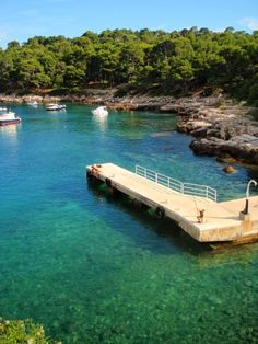 Island of Lokrum, Croatia. My favourite place in the world.