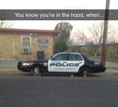 #lol #funny #humor
