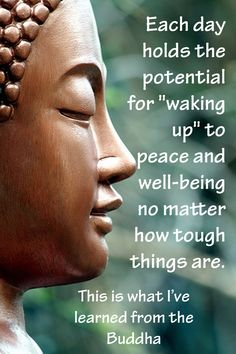"""This is what I've learned from the Buddha and is why I titled my second book """"How to Wake Up."""""""