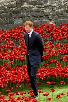 "Opening of the ""blood swept lands and seas of red"" installation at the Tower of London 5 August Tower Of London, Red Poppies, Prince Harry, Great Britain, Seas, Poppy, Blood, Poppies, Mac"