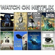 These are great documentaries that will inform you with what's really going on!!! Just watch it and it will open your eyes to reality!!! Give it a chance... open your heart!!! Do it for them... . . . #peruvianvegan #vegan #proudvegan #govegan #veganpride #veganpower #veganlove #animalactivist #veganactivist #documentary #animals #education #netflix #veganeverydamnday