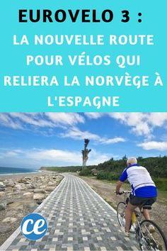 DS Styles DS Styles Bike support pour bouteille deau gourde V/élo Cage Porte-bidon pour v/élo pour v/élo Route Montagne VTT.