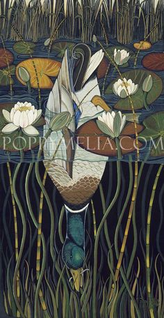 Drake and Waterlilies 1994 by Poppy Melia Animal Drawings, Cute Drawings, Bird Artwork, Water Art, Nature Illustration, Watercolor Bird, Art Journal Inspiration, Swans, Acrylic Art