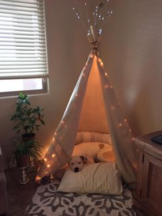 camp with dogs DIY Doggy Tipi! Animal Room, Wood Animal, Dog Bedroom, Bedroom Ideas, Bedroom Decor, Puppy Room, Build A Dog House, House Building, Dog Spaces