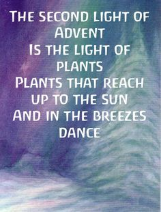 Advent ~ Week Two: The Light of Plants ~ Verse Waldorf Crafts, Waldorf Dolls, Steiner Waldorf, Noel Christmas, Christmas Crafts, Xmas, Advent Wreath, Winter Solstice, Waldorf Kindergarten