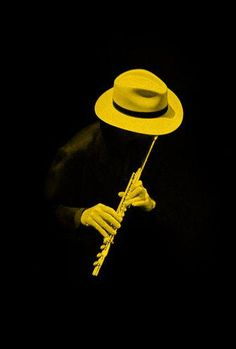 Yellow and black Yellow Art, Mellow Yellow, Black N Yellow, Black And White, Color Yellow, Yellow Photography, Splash Photography, Jazz Art, Shades Of Yellow