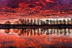 Peterborough, UK:   Red clouds are reflected on the calm lake water in Nene Park on Jan. 18.
