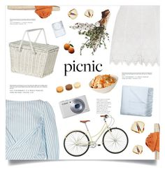 """Perfect Picnic"" by marina-volaric ❤ liked on Polyvore featuring Johanna Ortiz, Olli Ella, Zimmermann, Valentino, Acne Studios and picnic"