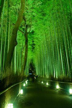 Kyoto, Japan: photo by Takasue FUJII