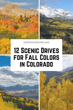 Here's your go-to guide for seeing fall foliage across the beautiful Centennial State all from the comfort of your vehicle. Road-trippers get ready to be dazzled by mother nature's remarkable display of fall color. Road Trip To Colorado, Moving To Colorado, Visit Colorado, Colorado Hiking, Pagosa Springs Colorado, Loveland Colorado, Places To Travel, Places To Visit, Colorful Mountains