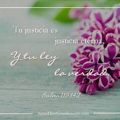 memorizar semana 6 #AmaaDiosGrandemente #Salmo119 #Salmos #versodiario…