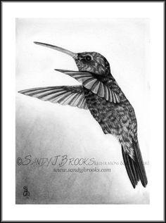 Original Artwork Humming Bird Drawing Charcoal Graphite Signed. $19.99, via Etsy.