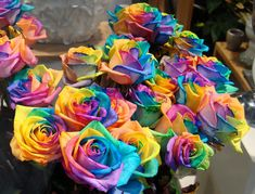 RAINBOW ROSE In 2004 River Flowers and F. Zandbergen, successfully grew a rose that had its petals rainbow colored. As petals get their nourishment through the stem, the idea is to split the stem into several channels and dip each one in a different col Rainbow Flowers, Rainbow Colors, Rainbow Bouquet, Dye Flowers, Neon Flowers, Hippie Flowers, Rainbow Art, Spring Flowers, White Flowers