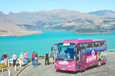 Welcome to Christchurch's Grand Tour guided coach tour includes Christchurch's 4 must do attractions – Punting on the Avon, Gondola, Botanic Gardens & the Tram. Coach Tours, Beautiful Park, South Island, Grand Tour, Tour Guide, Caterpillar, Day Trip, Botanical Gardens, Avon