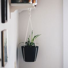 Amazing DIY Hanging Planter
