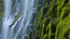 http://robertfinkelstein.files.wordpress.com/2009/06/proxy-falls-cascade-mountains-oregon.jpg