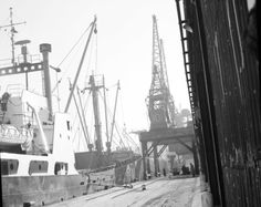 A cargo ship berthed at No 7 shed in Imperial Dock, 1959. Picture: TSPL