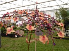 Tracey Griffin's Design - 2010 RHS Chelsea Flower Show Florist of the Year competition