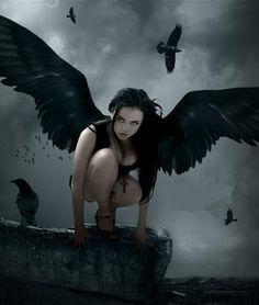 Paradise of Angels - Comunidade - Google+