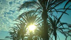 Sa Coma, Mallorca, Juli 2013