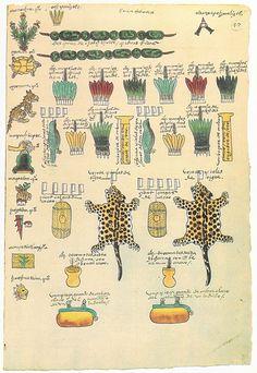 codex-mendoza-aztek-07 - La boite verte