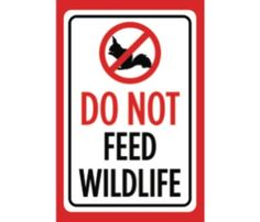 6 Pack No Dogs Allowed Large Print Black Red White Picture Poster Animal Outside Park Business Notice Sign 12x18