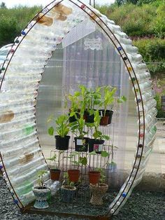 Gewächshaus aus PET Flaschen Mehr If you're a serious gardener, you would love to get your hands on a greenhouse. So check out these easy tutorials for a DIY greenhouse! Reuse Plastic Bottles, Recycled Bottles, Plastic Recycling, Plastic Bottle Greenhouse, Recycling Ideas, Plastic Glass, Plastic Bag Crafts, Plastic Bottle Planter, Plastic Bottle Caps