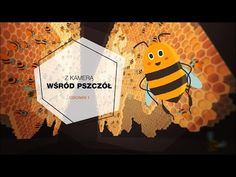 Z kamerą wśród pszczół Save The Bees, Education, Youtube, Kids, Crafts, Speech Language Therapy, Bee, Cameras, Young Children