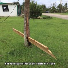21 WTF Images Pics During and After Natural Disasters to Entertain Your Brain ! Everyone wants to look Dame Nature, Natural Disasters, Natural Phenomena, Best Funny Pictures, Funny Pics, Random Pictures, Decir No, Scary, Funny Stuff