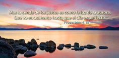 α JESUS NUESTRO SALVADOR Ω: Premio de la humildad son el temor del Señor, la riqueza, el honor y la vida. Prov 22, 4