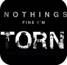Nothings fine i'm torn