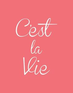 "! Oui c""est la vie!!  Sometimes, when necessary, we have to say this and move on!!    Aline ♥"