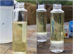 Experimente für Kinder anleitung-lavalampe-öl-wasser-vermischen-plastikflasche