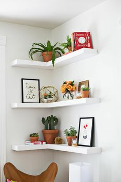 I like these corner shelves... and the cacti... these are some plants we might be able to have? the cats would only paw them ones, plus they can't really chew them?