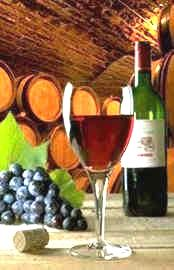 Wines Vocabulary-Red Wines