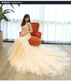 Lace cotton Wedding dress (Champagne word zipper section -S) YTFF1584