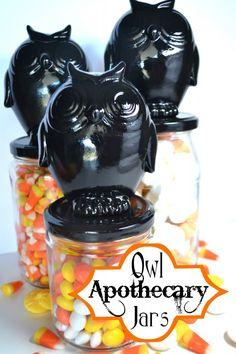 Halloween Owl Apothecary Jars from Petersen {Pink Cake Plate} Halloween Owl, Holidays Halloween, Halloween Themes, Halloween Crafts, Holiday Crafts, Holiday Fun, Halloween Party, Halloween Tricks, Halloween Stuff