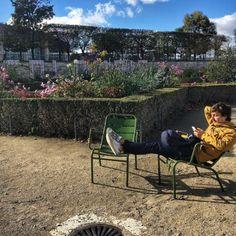 Lounging #sitting in the #autumn #sunshine in the #garden #tuileries #jardindestuileries in #Paris (at Jardin des Tuileries)