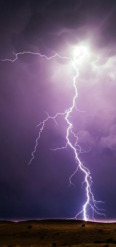 Never mind, gang - it's a BORE down there - Pictures Of Lightning, Storm Pictures, Nature Pictures, Ride The Lightning, Thunder And Lightning, Lightning Strikes, Lightning Photography, Nature Photography, Lighting Storm