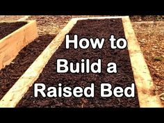 How to Build Raised Garden Beds on Your Own