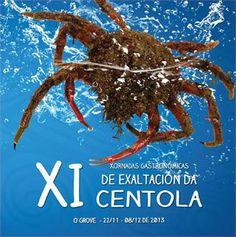 XI Xornadas Gastronómicas de Exaltación da Centola en O Grove #galicia