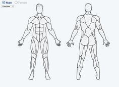 Click on a part of the body and Muscle Wiki will give you a handful of exercises just for that part. Super helpful and informing. Check it out here.