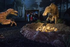 Dinosaurier #Austellung #Dinos Salzburg, Tyrannosaurus Rex, T Rex, Lion Sculpture, Statue, Painting, Art, Dinosaurs, Art Background