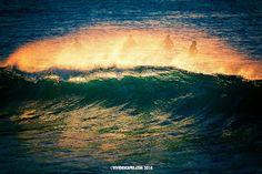 (Loc) Posted on May 25 2016 at 08:44AM by vividescapes:  S U R F E R  S P R A Y   Bronte in the autumn light... #bronte #brontebeach #waves #sydney #australia #autumn #sunrise #ilovesydney #seeaustralia #mynikonlife #ig_australia #FocusAustralia
