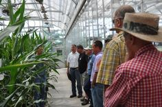 Farmers fly in several times a week to tour the Beck's Hybrids Atlanta, Indiana facilities. Intern Avenue: Blessed with the Best