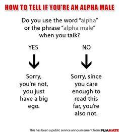 Alpha male?