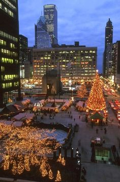 Chicago at Christmas time is a must-experience! Visit Daley Plaza during the holidays. Chicago Christmas, Christmas In The City, Christmas Town, Christmas Traditions, Christmas Lights, Christmas Markets, Christmas Displays, Christmas Decorations, Christmas Nativity