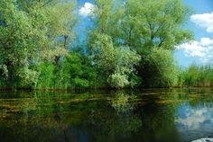 Duna Delta (Szentgyörgy)-Fekete-tenger nyaralás - OutThere