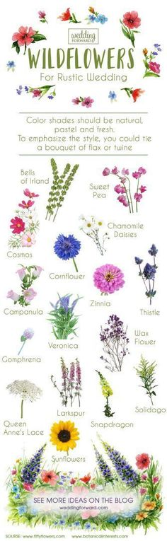 7 Wedding Flowers Infographics That Will Help You ❤ wildflowers for rustic wedding flowers infographics ❤ See more: http://www.weddingforward.com/wedding-flowers-infographics/ #wedding #bride #weddingflowers
